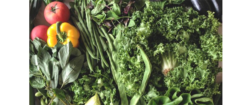 肌荒れを内側から解決する野菜
