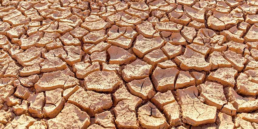 砂漠の乾燥