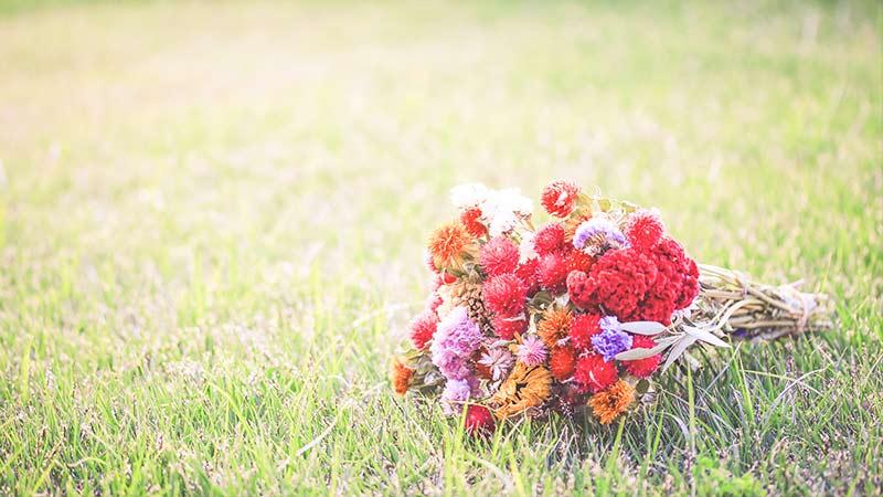 ロマンチックな花